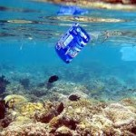 coidar o mar