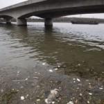 puente contaminado